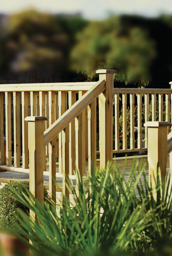 Protecting Raised Decking from Garden Pests