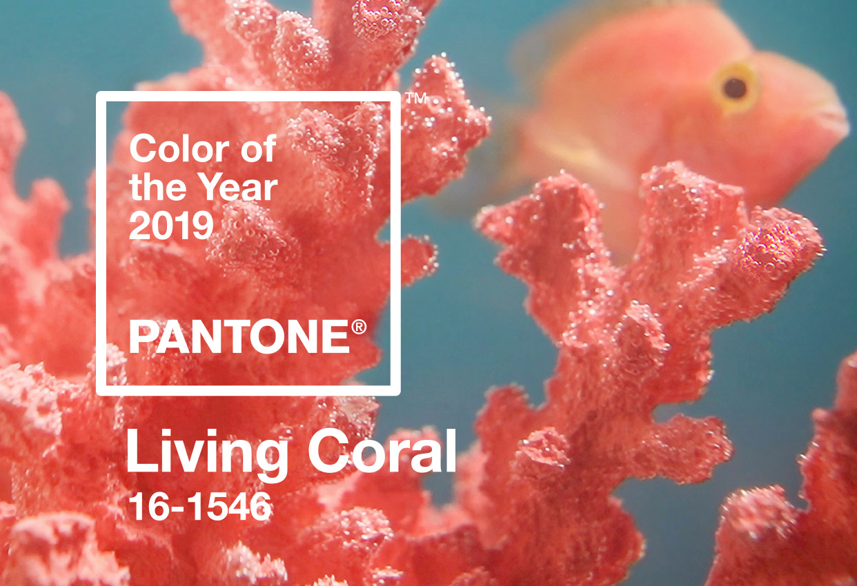 Pantone 2019 Colour of the Year: Living Coral
