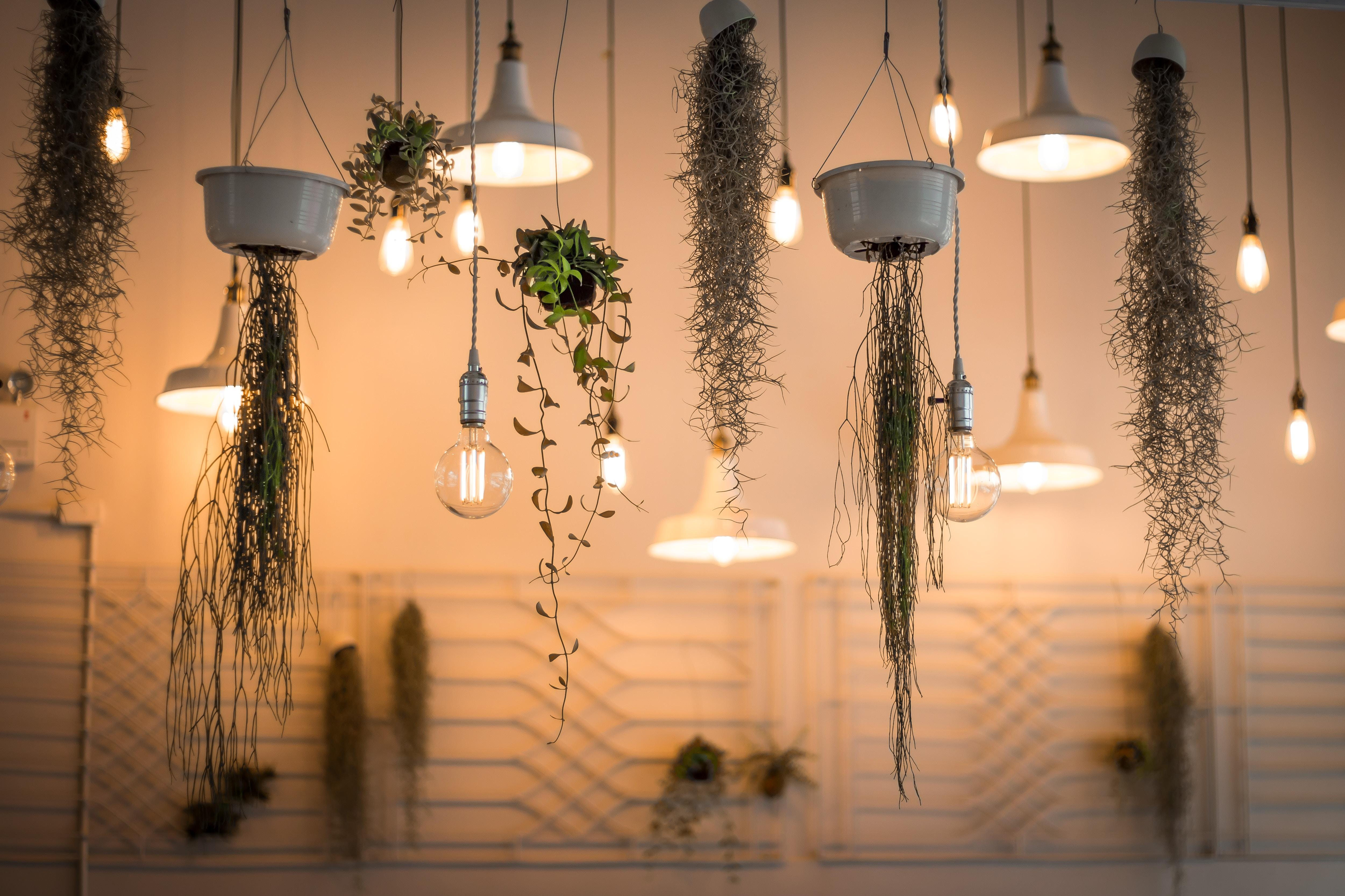 Using light to make a room feel bigger
